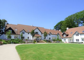 Thumbnail 2 bed cottage for sale in 17 Lime Tree Court, 17 Lime Tree Court