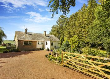 Thumbnail 3 bed bungalow for sale in The Firth, Overgrass, Morpeth