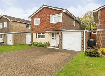 Thumbnail 4 bed detached house for sale in North Acre, Banstead, Surrey