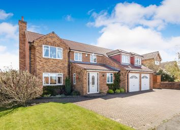 Thumbnail 5 bedroom detached house for sale in Redbrook Avenue, Hasland, Chesterfield