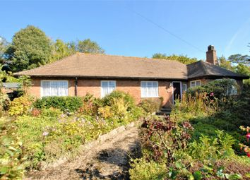Thumbnail 3 bed bungalow for sale in Cannongate Avenue, Hythe