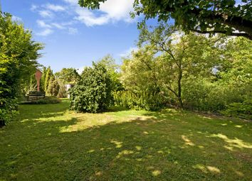 Thumbnail 4 bed detached bungalow for sale in Shadoxhurst, Ashford
