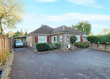 Thumbnail 4 bed bungalow for sale in Anmore Road, Denmead, Waterlooville