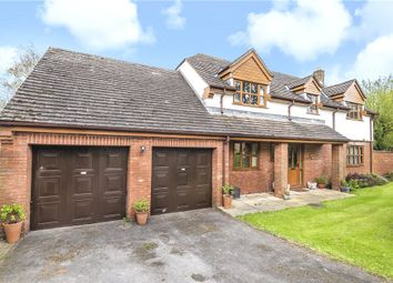 Thumbnail 4 bed detached house for sale in Fippenny Hollow, Okeford Fitzpaine, Blandford Forum
