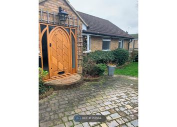 Thumbnail 4 bed bungalow to rent in Sycamore Avenue, Hatfield
