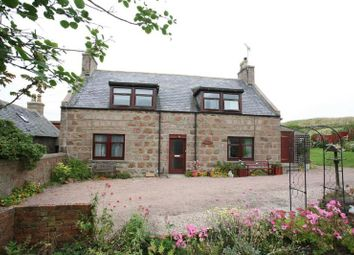 Thumbnail 3 bed semi-detached house to rent in Hill Street, Cruden Bay