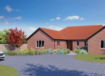 Thumbnail 4 bedroom detached bungalow for sale in The Street, Poringland