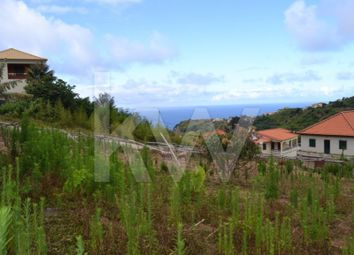 Thumbnail Land for sale in Referta, 9225, Portugal