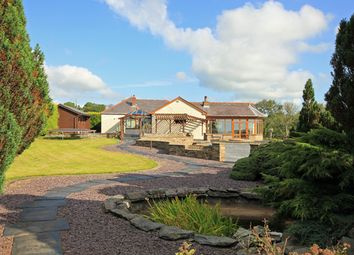 Thumbnail 4 bed detached house for sale in Llanpumsaint, Carmarthen, Carmarthenshire