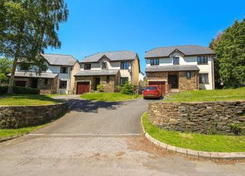 Thumbnail 4 bed detached house for sale in Duckspond Road, Buckfastleigh