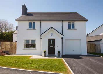 Thumbnail 4 bedroom detached house for sale in 10, Oakwood Park, Comber