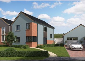 Thumbnail 3 bed detached house for sale in Tarka Way, Crediton