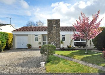 Thumbnail 2 bed detached bungalow for sale in Holmeleaze, Steeple Ashton, Wiltshire
