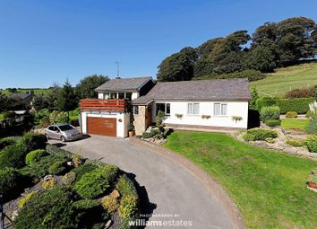 Thumbnail 3 bed detached bungalow for sale in Llanasa, Holywell