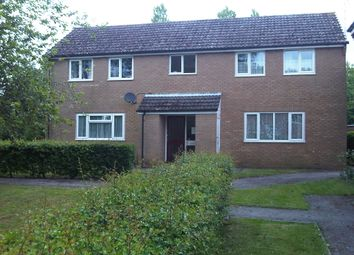 Studio to rent in Willow Drive, Ringwood, Hampshire BH24