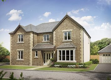 Thumbnail 5 bedroom detached house for sale in Stonecross Meadows, Kendal, Cumbria