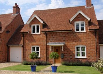 Thumbnail 3 bed property to rent in Dummer, Basingstoke
