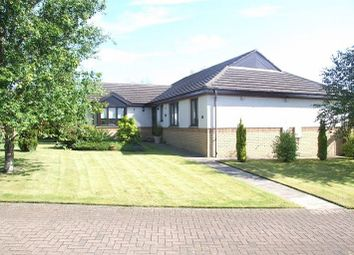 Thumbnail 4 bed detached bungalow for sale in Bucklerburn Wynd, Peterculter, Aberdeenshire