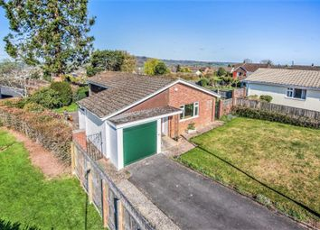 Thumbnail Detached bungalow for sale in The Pines, Honiton, Devon
