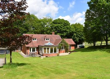 Thumbnail 4 bed equestrian property for sale in Linwood, Ringwood