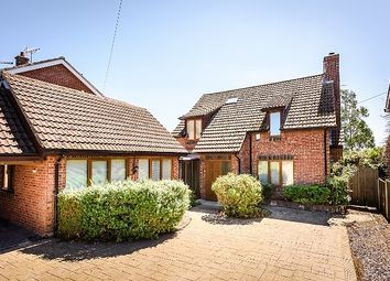 Thumbnail 4 bed detached house for sale in The Hills, Reedham