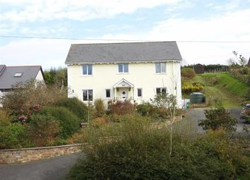 Thumbnail 5 bed detached house for sale in Ferwig, Cardigan