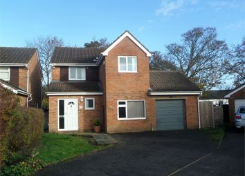 Thumbnail 4 bed detached house to rent in Wintour Close, Chepstow
