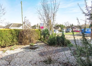 Thumbnail 3 bed detached bungalow for sale in Wyndfields, Necton, Swaffham