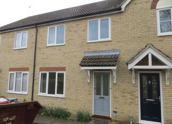 Thumbnail 3 bed terraced house to rent in Old Brewery Close, Ely