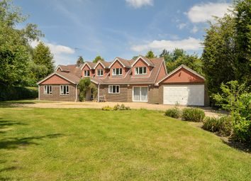 Thumbnail 5 bed detached house to rent in Hogwood Road, Ifold, Loxwood, Billingshurst