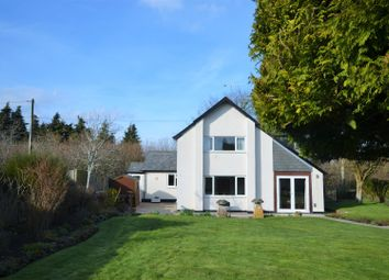 Thumbnail 3 bedroom detached house for sale in Salisbury Road, Shaftesbury