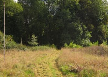 Thumbnail Land for sale in Hall Road, Elsenham
