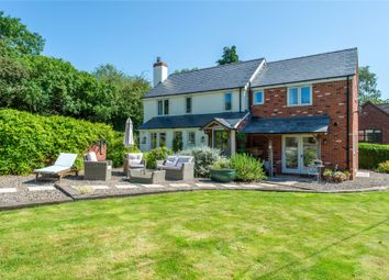 Thumbnail 3 bed detached house for sale in Rock Lane, Clifton-On-Teme, Worcester, Worcestershire