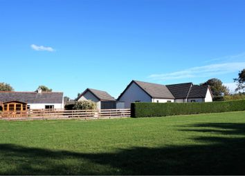Thumbnail 4 bedroom detached bungalow for sale in Old Croft, Spey Bay