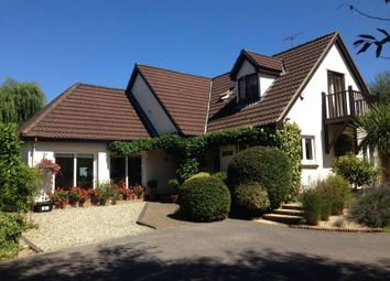 Thumbnail 5 bed detached house for sale in Kings Meadow, Daccabridge Road, Kingskerswell, Newton Abbot