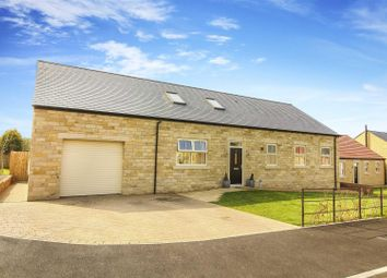 Thumbnail 4 bedroom detached house for sale in Creighton Place, Embleton, Alnwick