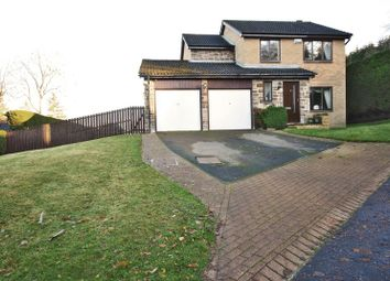 Thumbnail 4 bed detached house for sale in Loughbrow Park, Hexham