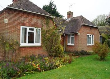 Thumbnail Bungalow to rent in Stevens Drove, Houghton, Stockbridge