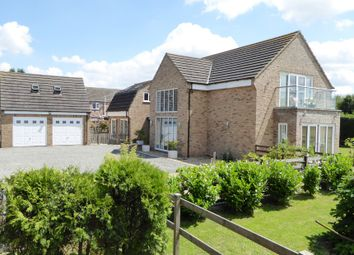 Thumbnail 4 bed detached house for sale in Wisbech St Mary, Wisbech - Cambridgeshire