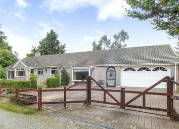Thumbnail 4 bed detached bungalow for sale in Lime Tree Way, Coads Green, Launceston
