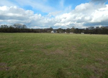 Thumbnail Land for sale in Land Off The Krons, Mill Road, Hempnall, Norfolk