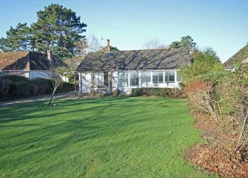 Thumbnail 2 bed bungalow for sale in Godshill, Fordingbridge