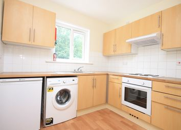 Thumbnail 5 bed maisonette to rent in Springfield Road, Brighton