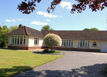 Thumbnail 4 bed detached bungalow for sale in Church Road, Windlesham