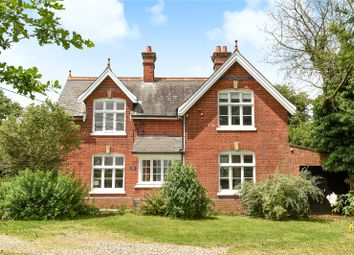 Thumbnail 3 bed detached house for sale in Hingham Road, Great Ellingham, Attleborough, Norfolk