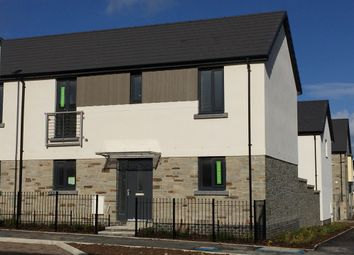 "Thumbnail 3 bed detached house for sale in ""The Pankhurst"" at Pomphlett Farm Industrial, Broxton Drive, Plymouth"