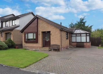 Thumbnail 3 bed detached bungalow for sale in Castleview Avenue, Paisley