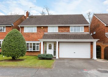 Thumbnail 5 bedroom detached house to rent in Baytree Walk, Watford