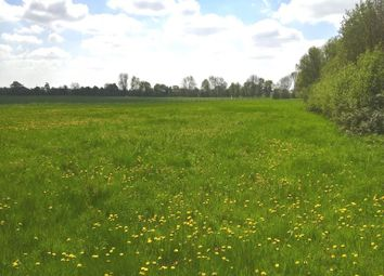 Thumbnail Farm for sale in At Tibenham Road, Aslacton, Norwich