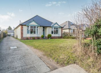 Thumbnail 4 bed detached bungalow for sale in Humber Doucy Lane, Rushmere St. Andrew, Ipswich